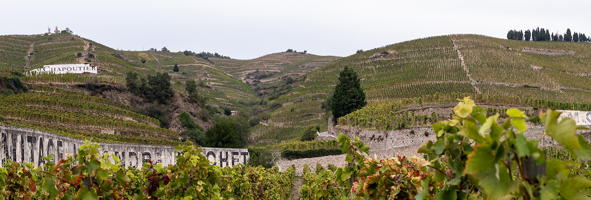 Hermitage Weinberge M. Chapoutier